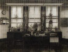 Office IV